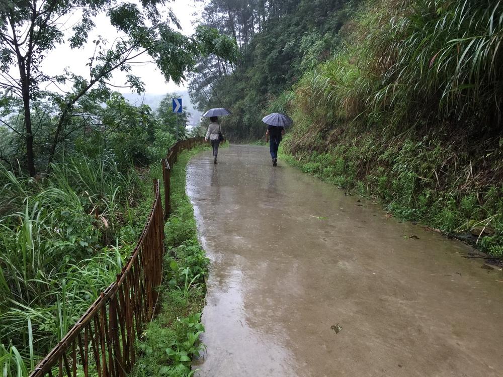 Driveway to Zhenrutang from gate.