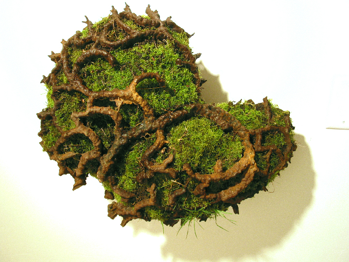 Second Nature w moss small file.JPG