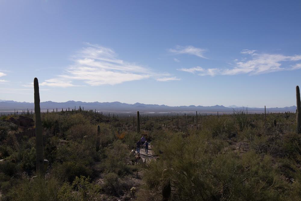 Tucson Day 4-5-84.jpg
