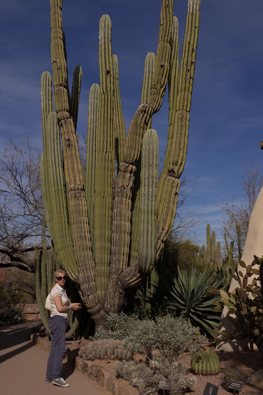 Tucson Day 7-32.jpg