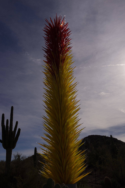 Tucson Day 7-36.jpg