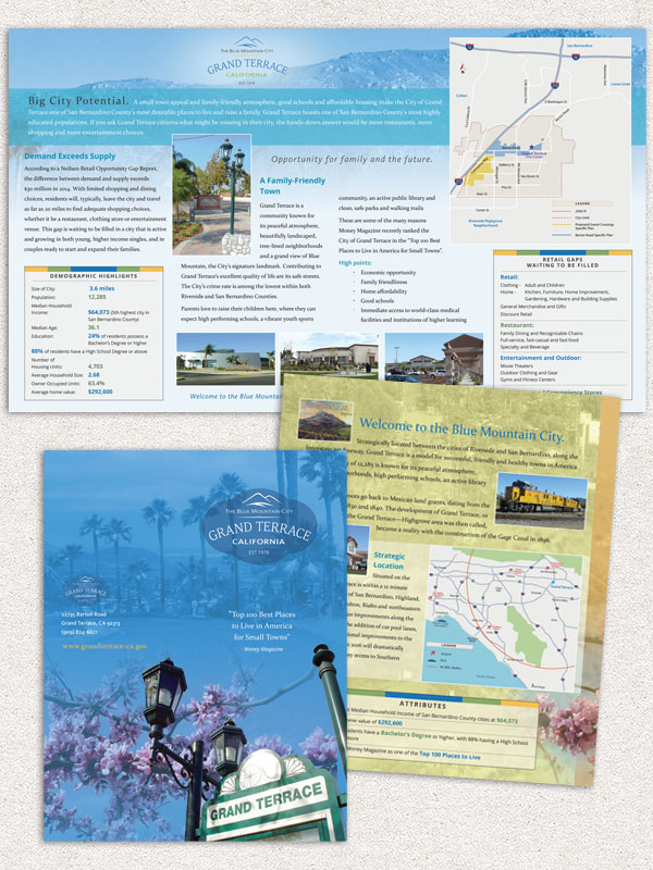 General Brochure with Demographics and Maps