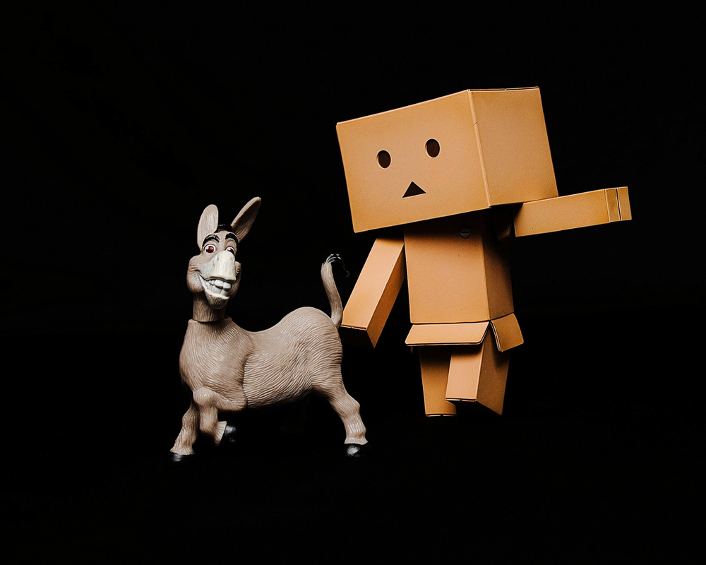 Toys365_2013-02-01_Donkey_Danbo_-1-Edit.jpg