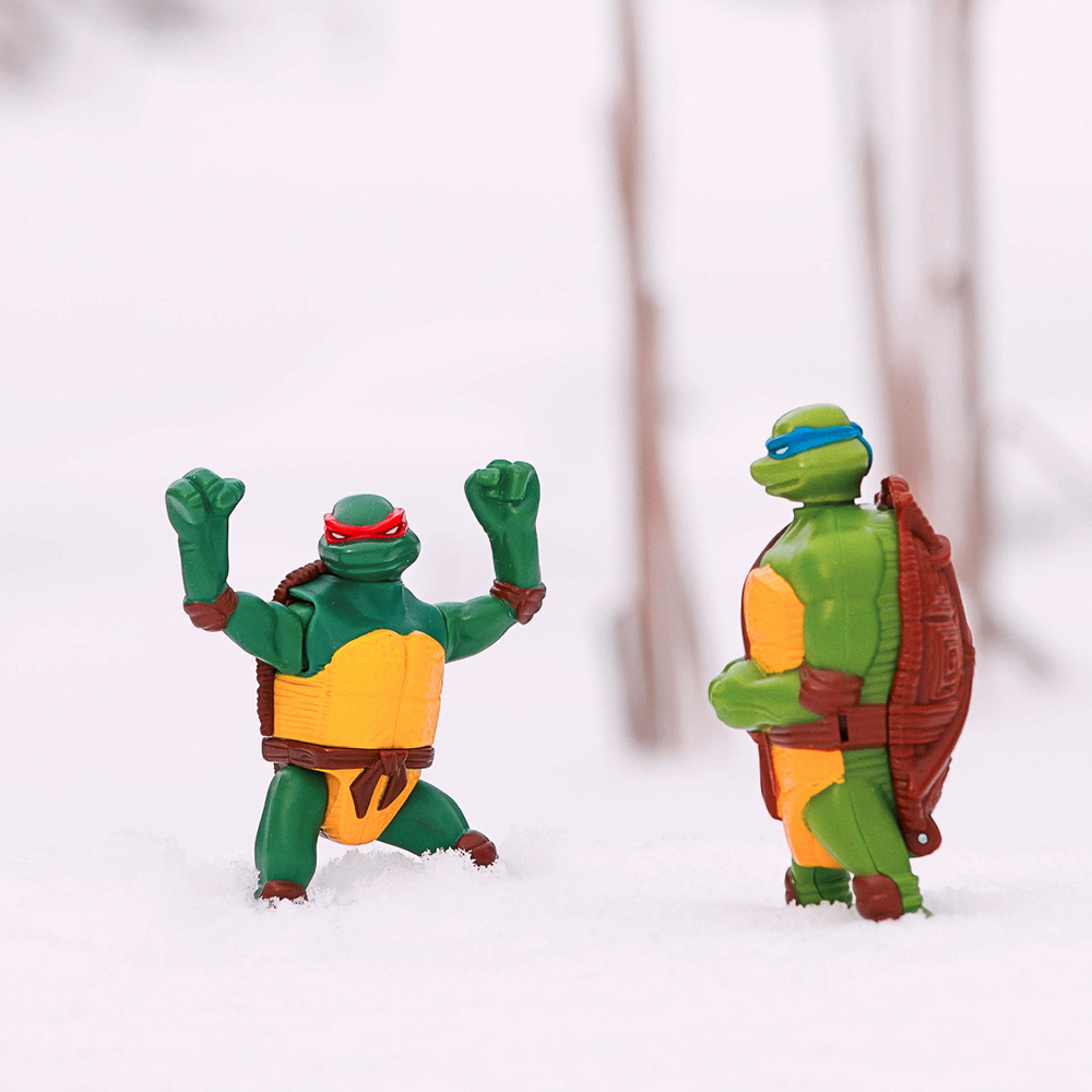 Toys365_tmnt_snow_pond_-2-Edit.jpg