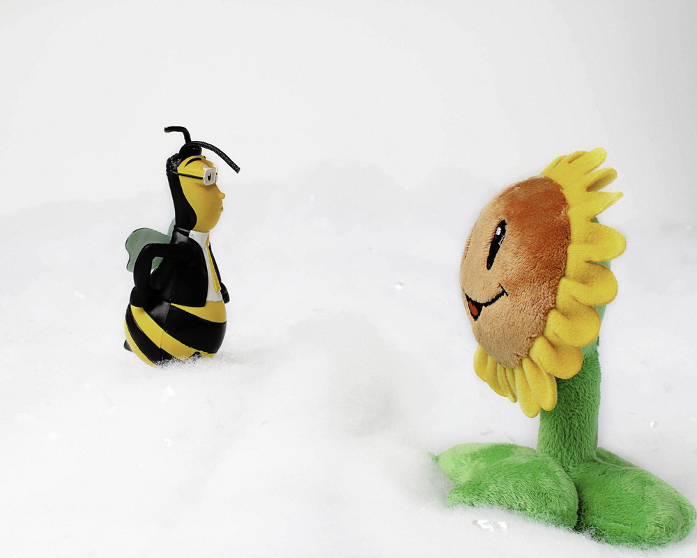 Toys365_2013-02-23_bee_and_sunflower_-2-Edit.jpg