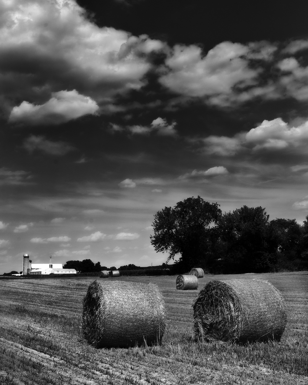 School_rd_hay_bales_2012-07-11_-28-Edit-Edit.jpg