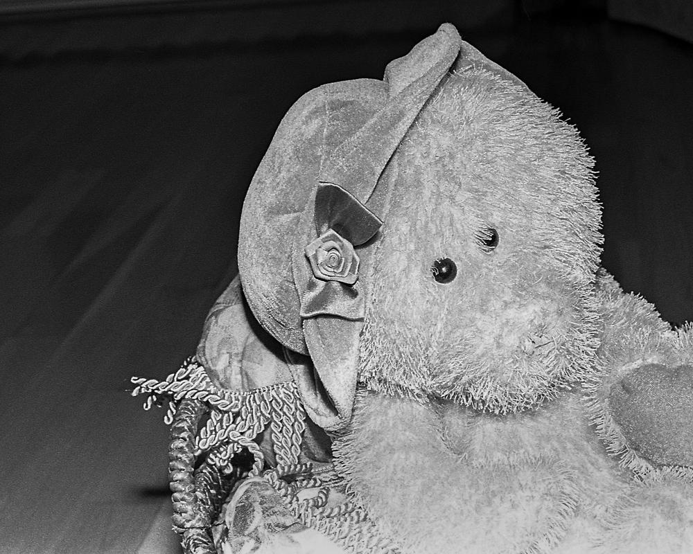 Bears_Life_2013-08-25_35mmPSMF_-4.jpg