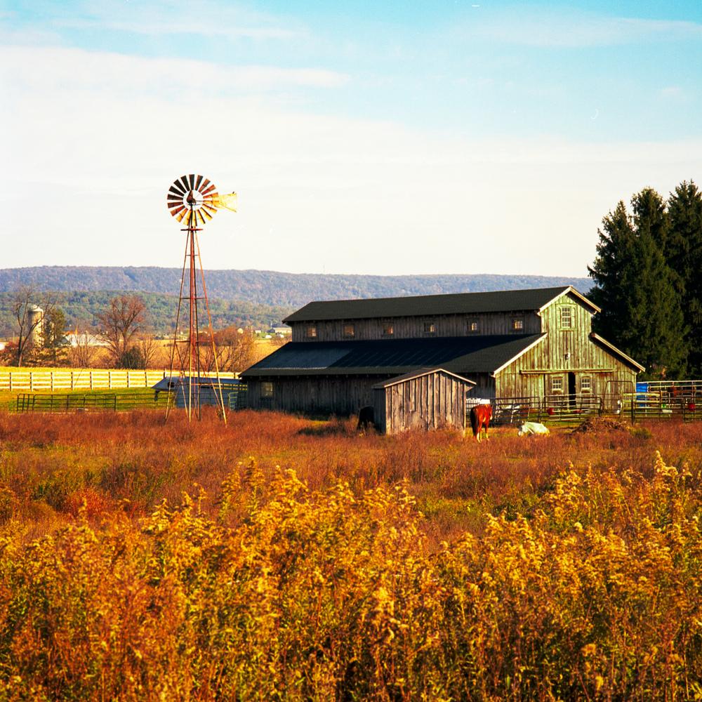 Fredericksburg_Barn_2013-10-26_Bronica_SQ-A_2400dpi_001-Edit.jpg