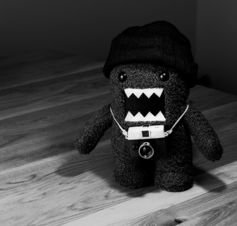 4x5_for_365_project_029_Domo_Angry_Tourist.jpg