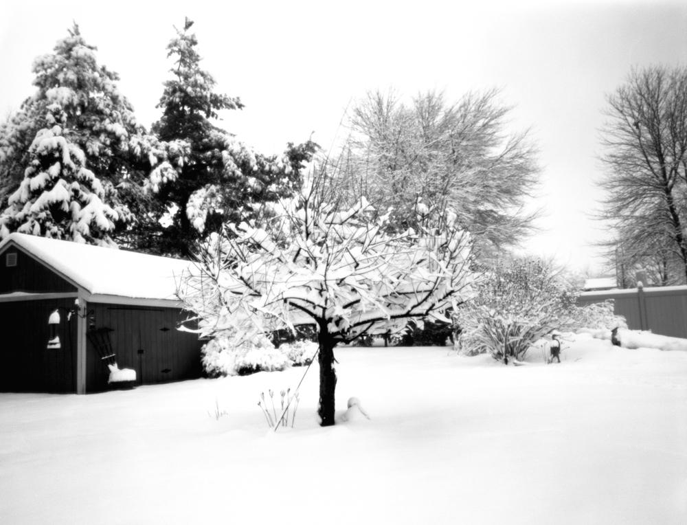 4x5_for_365_project_034_Backyard_Snow_pinhole.jpg