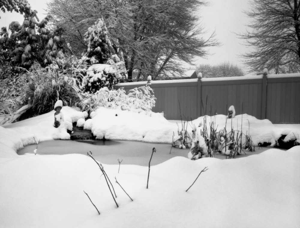 4x5_for_365_project_039_Backyard_Snowy_pond.jpg