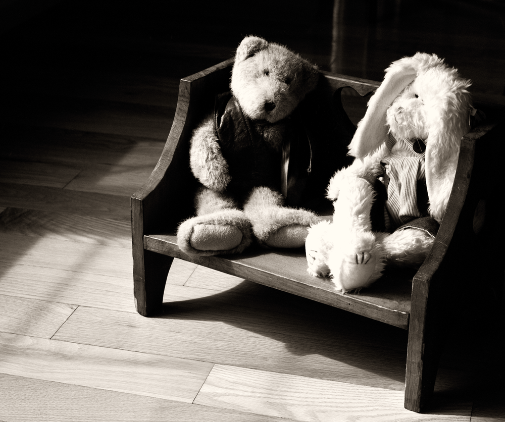 4x5_for_365_project_0108_Bears_On_Bench.png