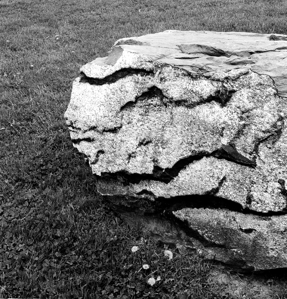 4x5_for_365_project_0140_Berks_Heritage_Center_rock.png