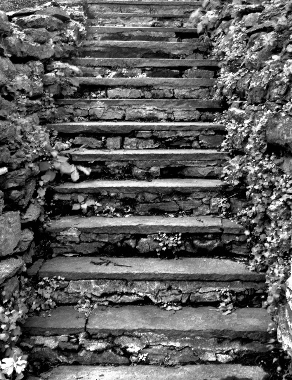 4x5_for_365_project_0187_Reading_Museum_stone_stairs.png