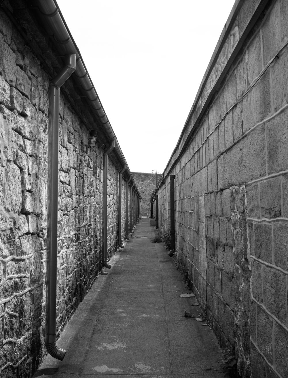 4x5_for_365_project_0273_esp_narrow_walkway.png