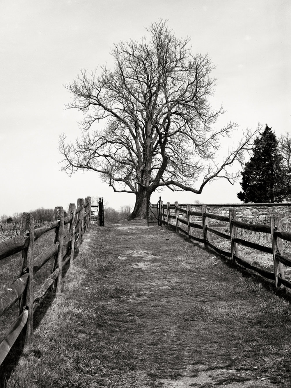 Path to family  cemetery on Mumma Farm at Antietam.