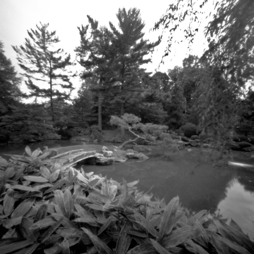 Shofuso_2017-10-06_Zero_2000_Acros_100_at_100_HC-110_Semi-Stand_1_100_1hr_plants_bridge_pond_001_Final.jpg