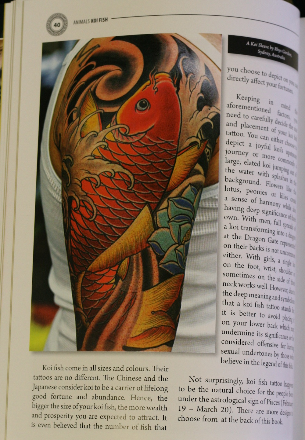 rhys gordon koi sleeve.JPG