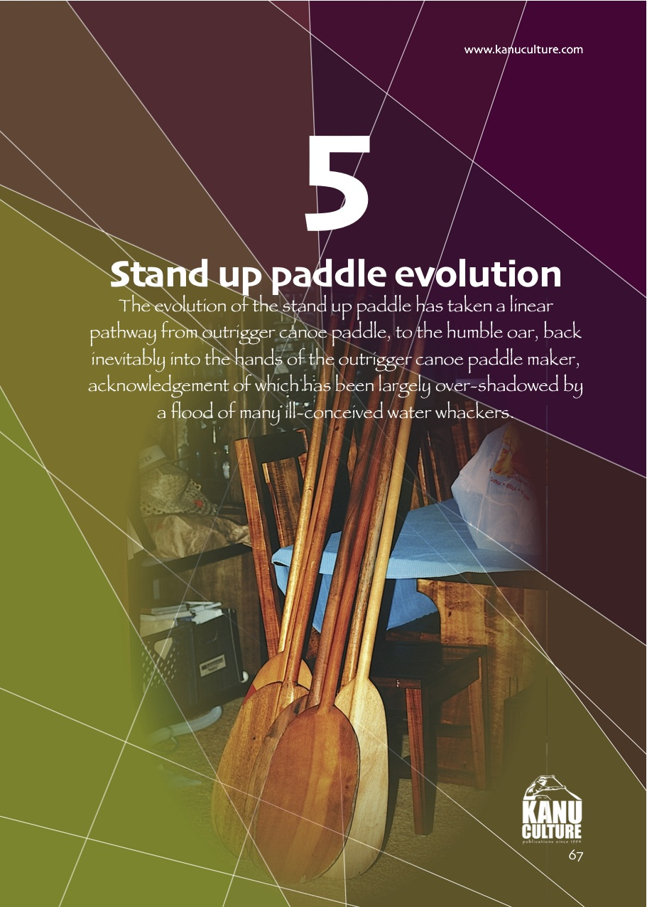5. PADDLE Evolution.jpg