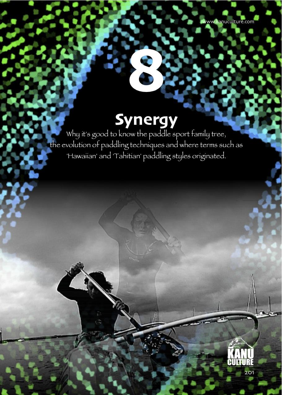 9. SYNERGY.jpg