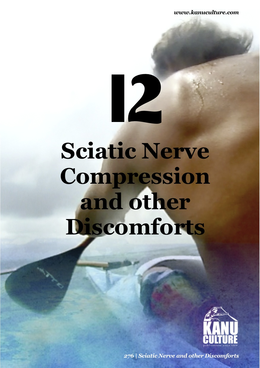 "Preview of ""13. Sciatic Nerve copy"".jpg"