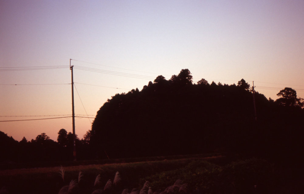 「阿紀神社の隣に在る」
