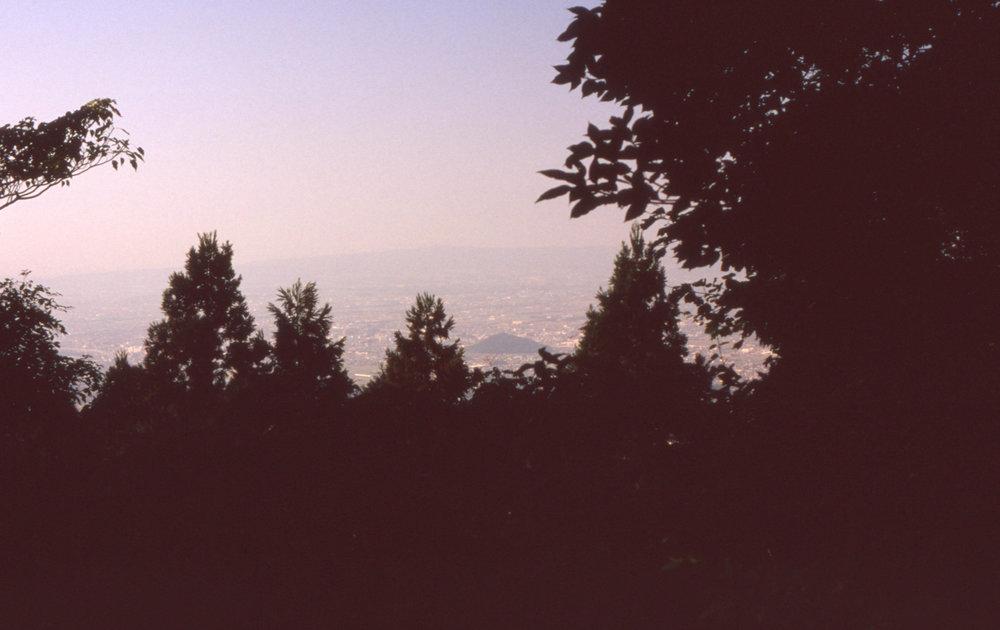 「鎌足公墓所より天香具山を視る」