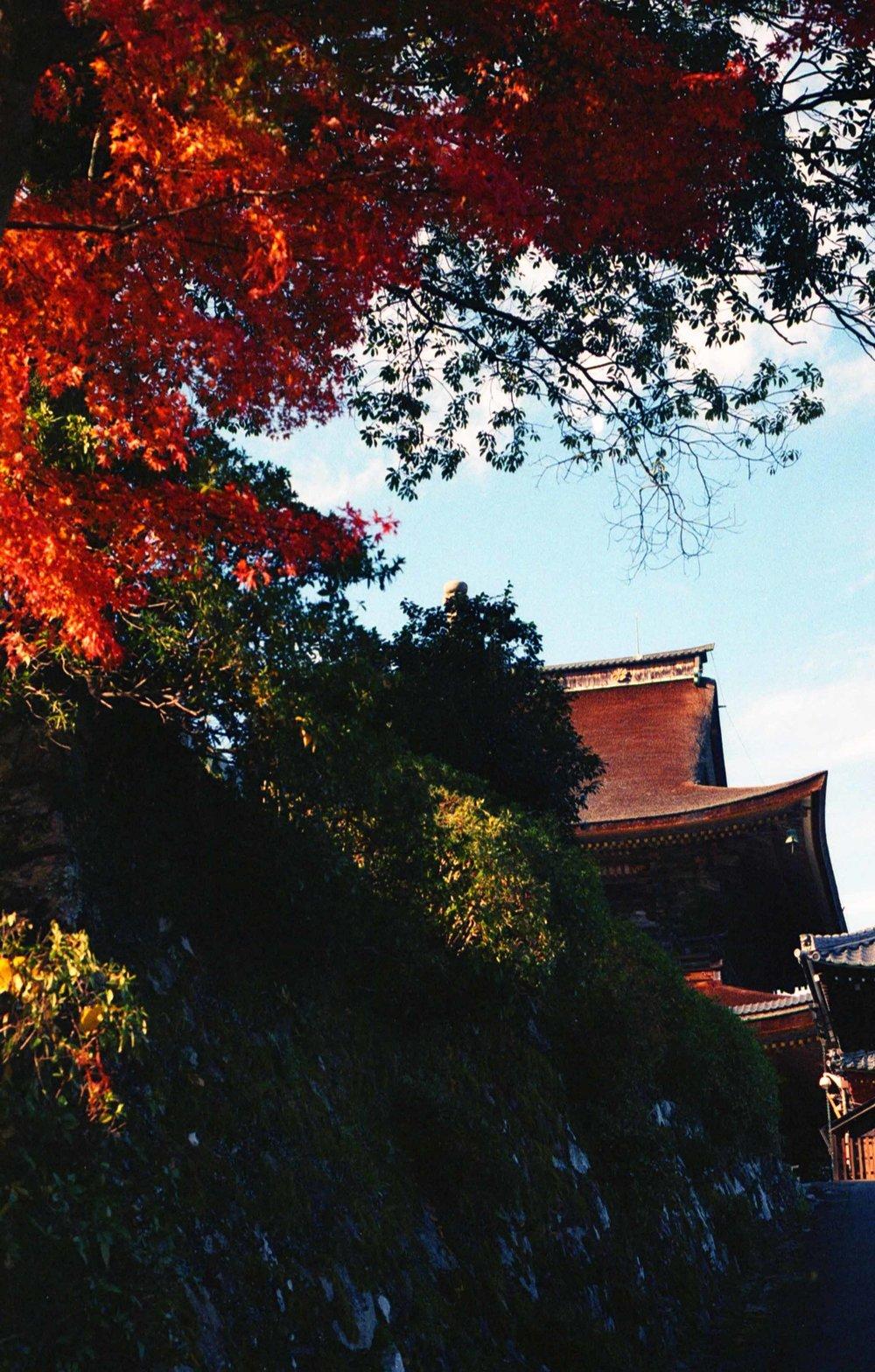 「金峯山寺藏王堂(Kinpuden-ji Zao-do)」