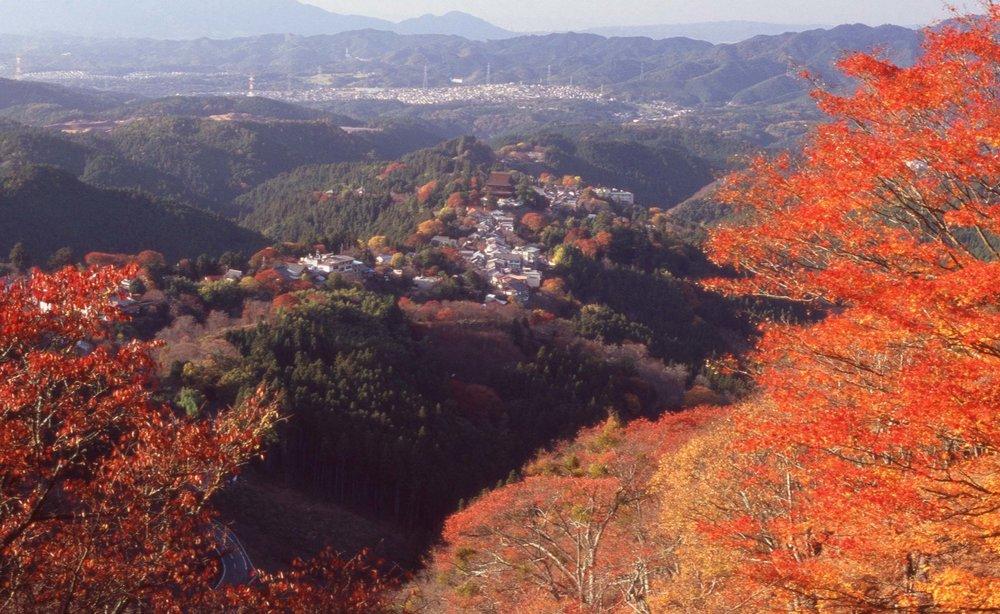 「上千本より藏王堂を望む(Looking down at Zao-do)」
