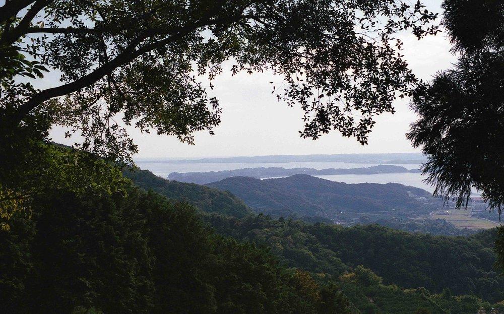 「三ケ日高山ふれあいの森への途上にて」
