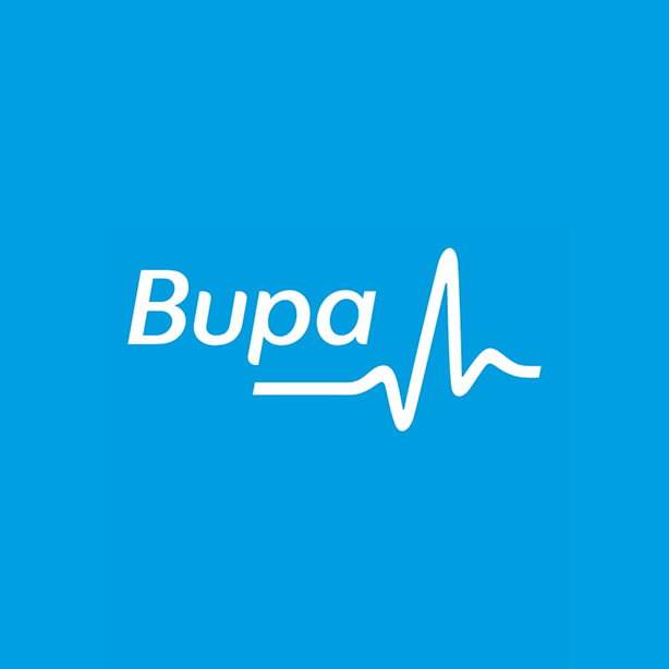 Bupa implements UX Lifecycle  Deployed User Experience Lifecycle approach to devise a technology change programme to support BUPA's business transformation.