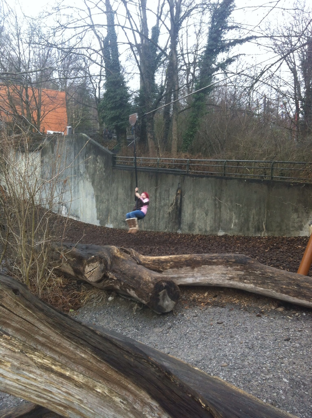 Zip lining at the Zurich Zoo.
