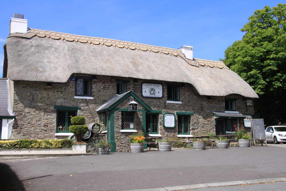 The White Hart Thatched Inn & Restaurant.  Lovely food.  Lovely cider.  Lovely hosts.  Just lovely.