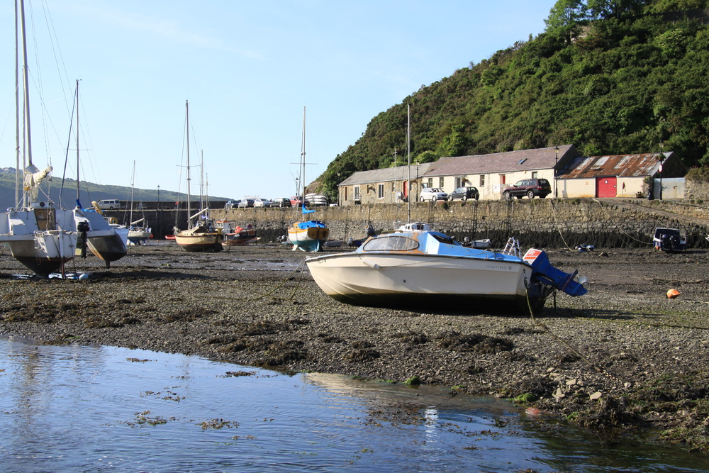 Fishguard.... low tide.