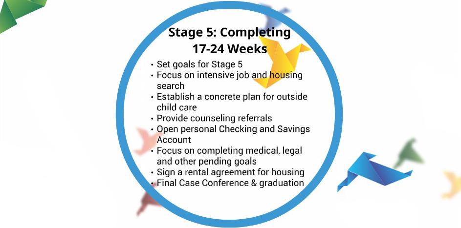 5 Stage.jpg