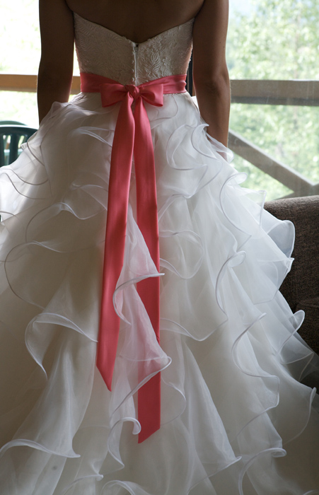 Back of the Dress.jpg
