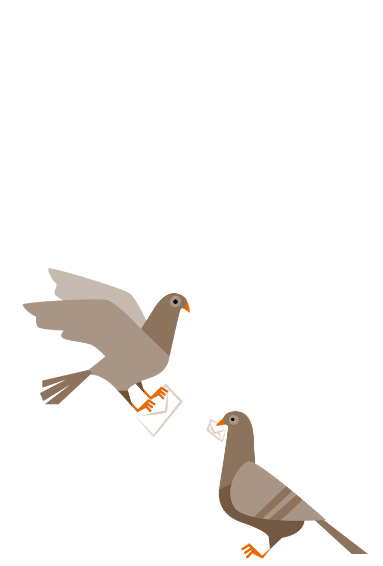 Porter's Pigeons