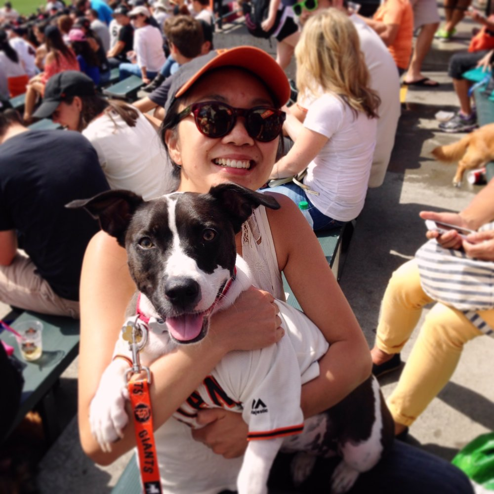 That's me and my dog Maddie at  Dog Days of Summer . Go Giants!