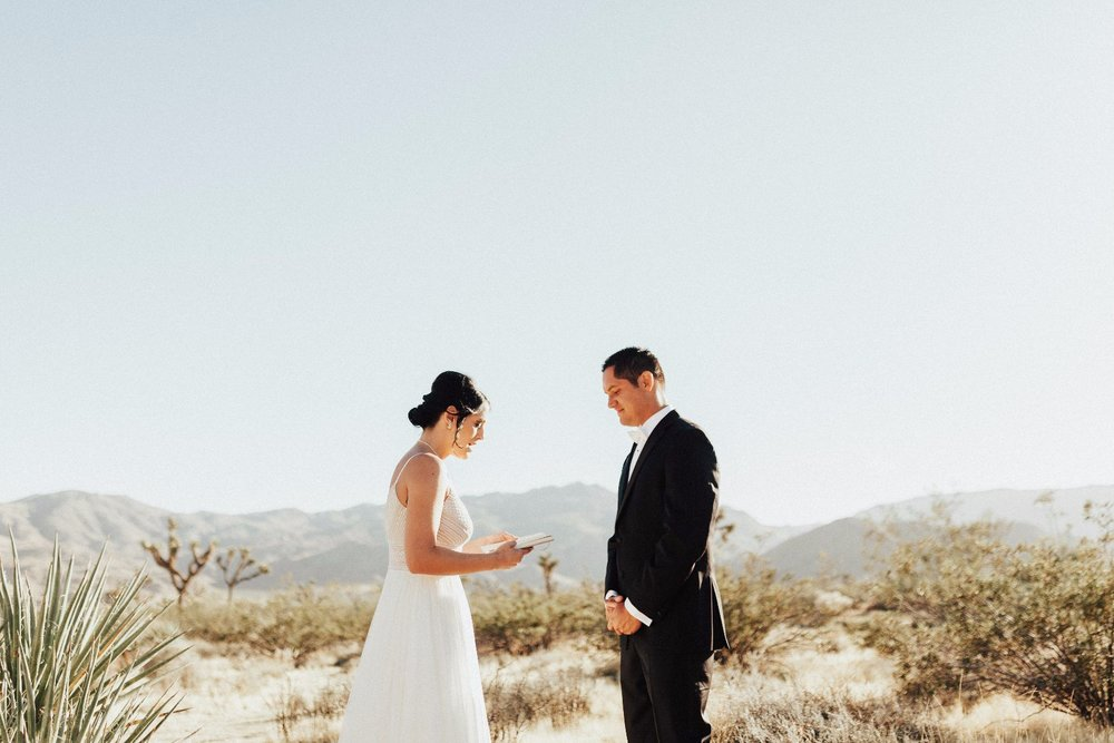 Ashley + Ben Joshua Tree Elopement-39.jpg