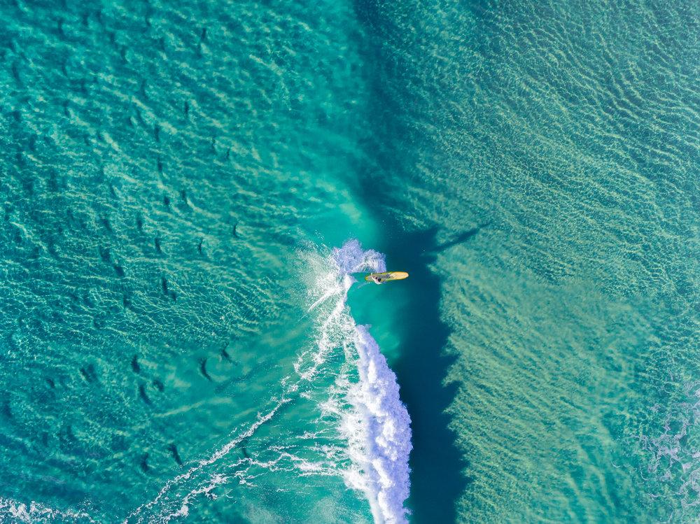Sunshine Beach web-14.jpg