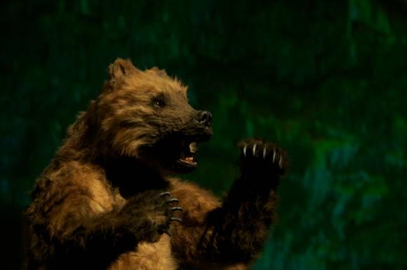 Bears' Lair