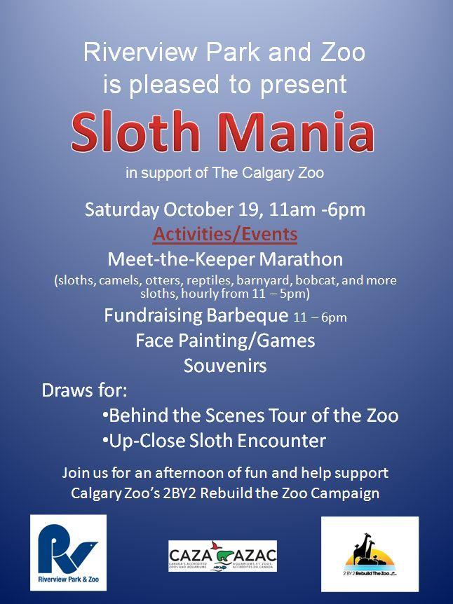 sloth mania promo_1_1.jpg