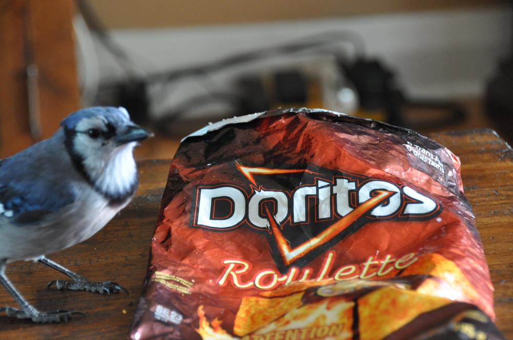 Doritos roulette for sale
