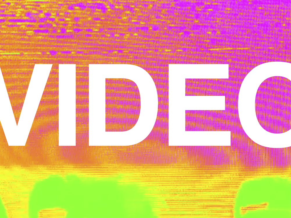 videologo.jpg