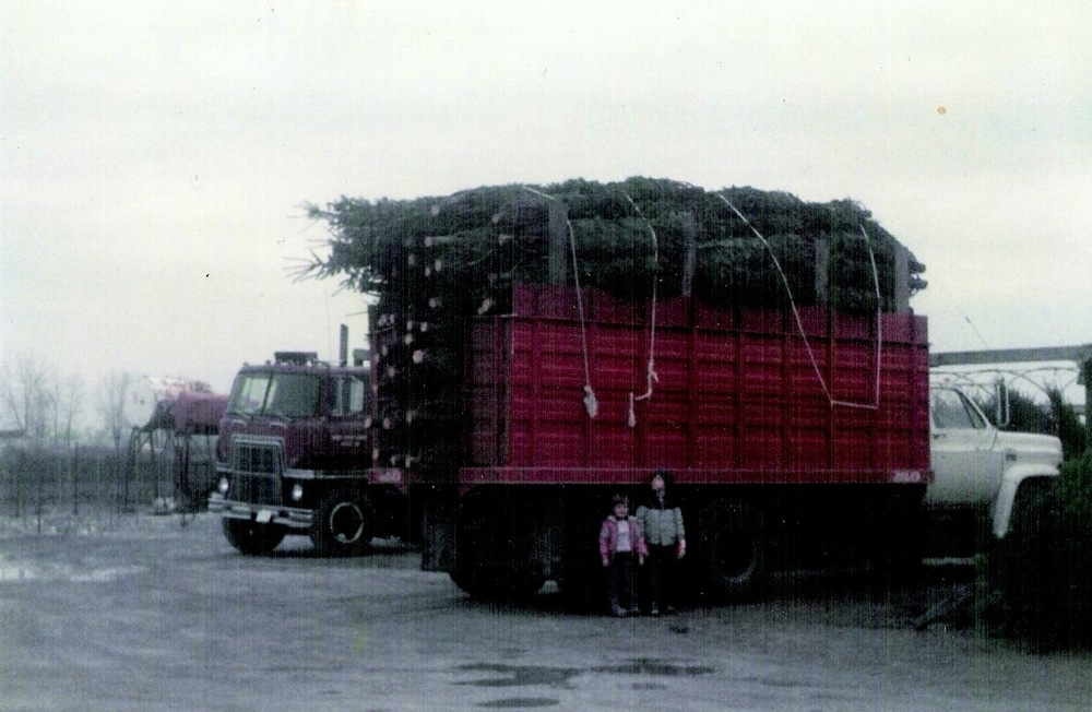 Ready for Christmas tree sales in the mid '80s