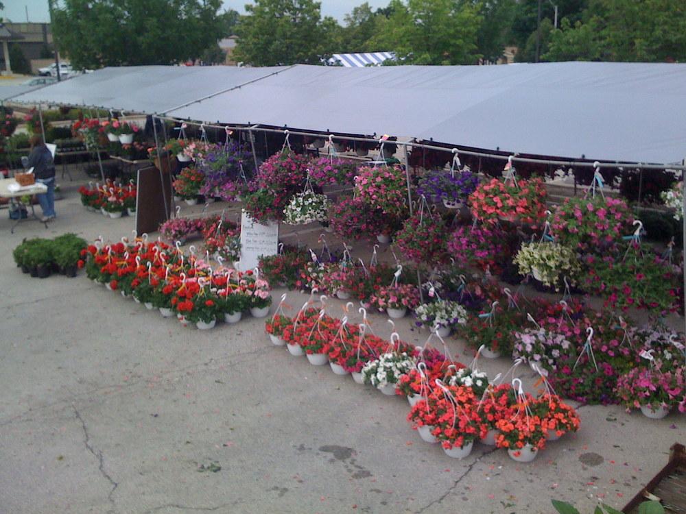 Oak Lawn Farmer's Market, 2009