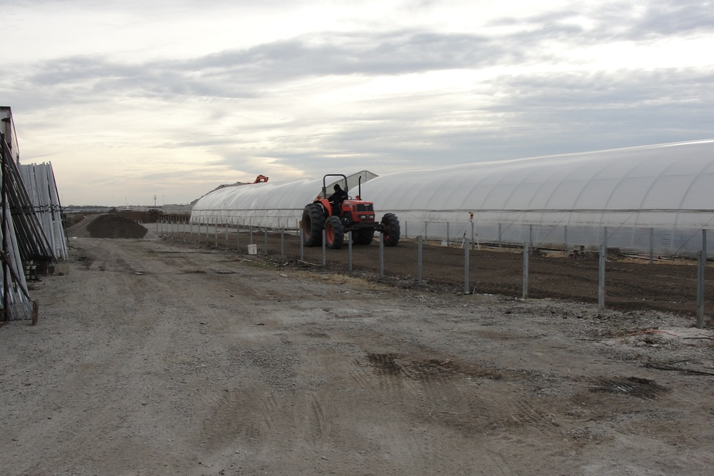 Building new greenhouses, 2009