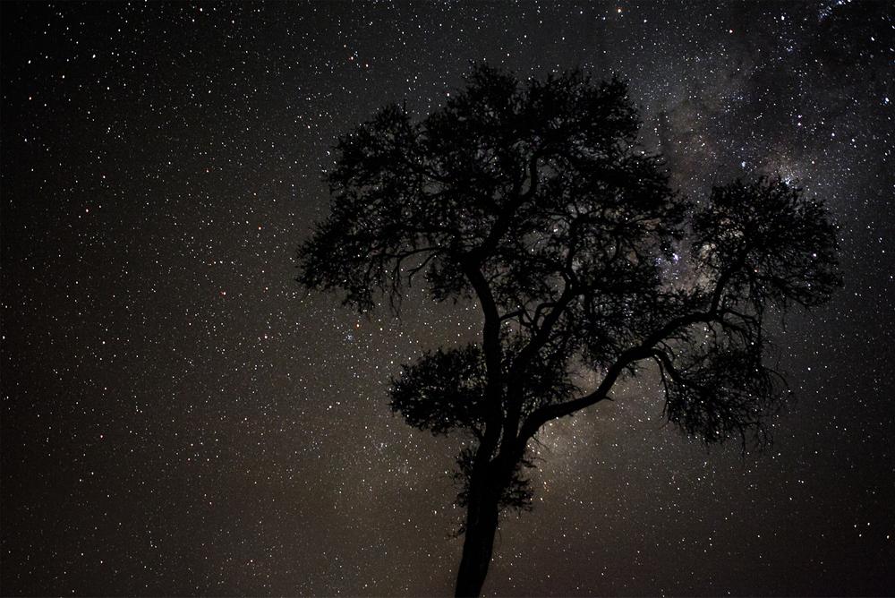 MLP_Nightscape_02.jpg
