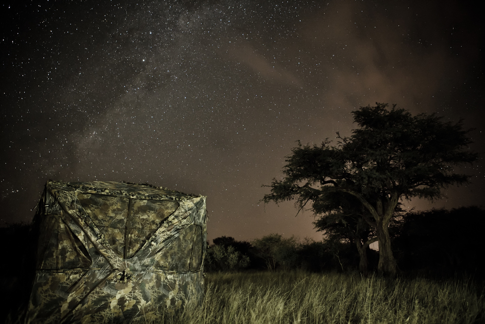 MLP_Nightscape_03.jpg