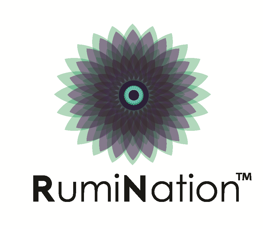 "RumiNation™   by Naomi Skwarna and the Ensemble, Inspired by Rumi  Devised by Vikki Anderson, Jesse Ash, Piotr Biernat, Naomi Skwarna and Andrew Shaver, RumiNation™ is a theatre event that engages the audience in questions of  corporate and cultural appropriation, devised as spiritual retreat. Come ready to be immersed in the world of the guru, the poetry of Rumi and be ready to dance.   In 2015 we rehearsed the devised script and presented public presentations featuring Owais Lightwala, Mina James, Anand Rajaram and Andrew Shaver at the Artscape Youngplace.   ""At RumiNation ™  we are pioneers of the Corporate Spiritual Retreat. Whether in a hotel or conference centre or boardroom, RumiNation ™  strives to bring the spiritual retreat right to your feet, and make you pay for the convenience! Led by charismatic CEO and Spirit Master Wren Daravesh, the evening provides participants with historically accurate and personally fortifying activities derived from Rumi's poetry through games, break-outs, keynotes."""